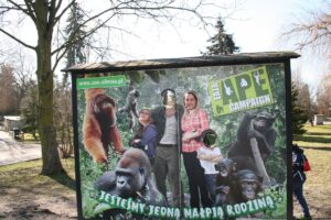 Read more about the article Jedziemy do zoo…